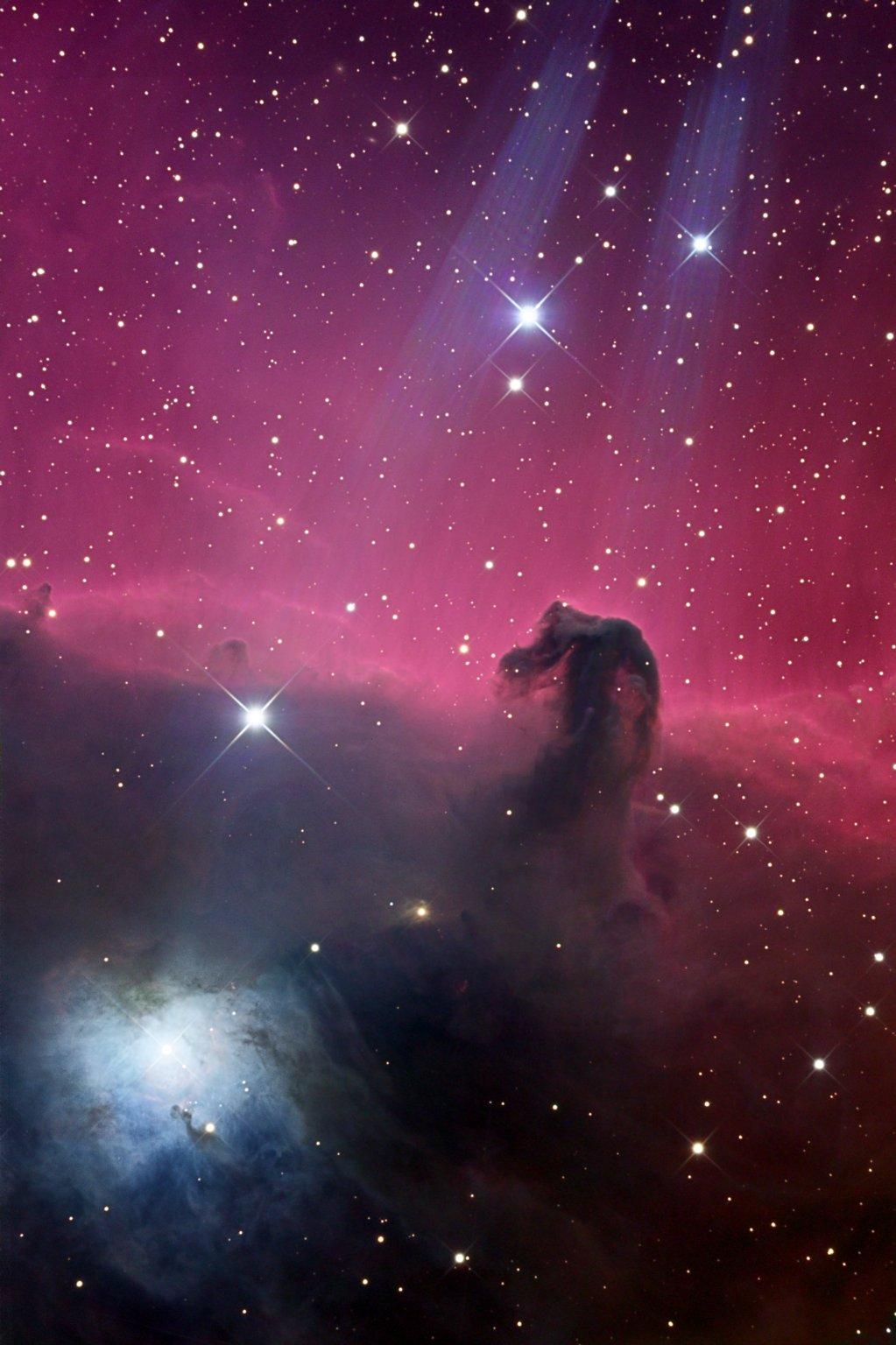 Orione: testa di cavallo