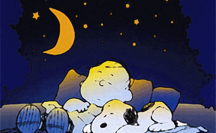 Snoopy e Charlie Brown addormentati