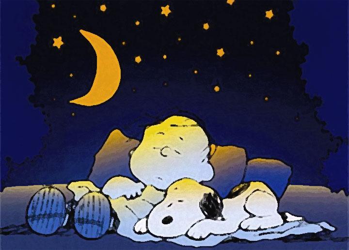 Cadere mentre ci si addormenta  (Snoopy e Charlie Brown addormentati)