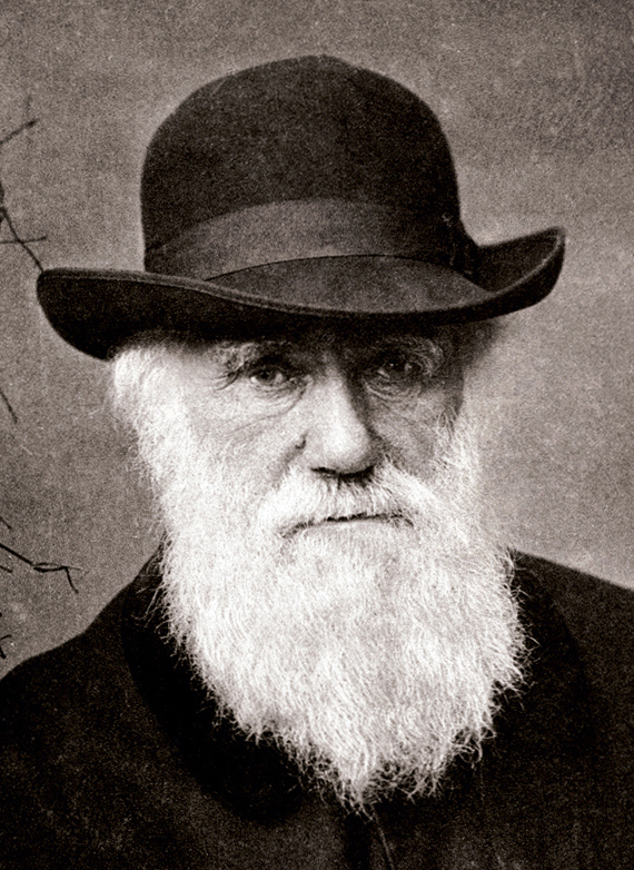 Charles Darwin - 1881