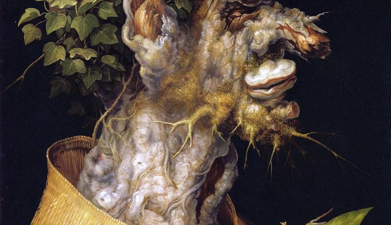 L'inverno (1569), di Giuseppe Arcimboldo