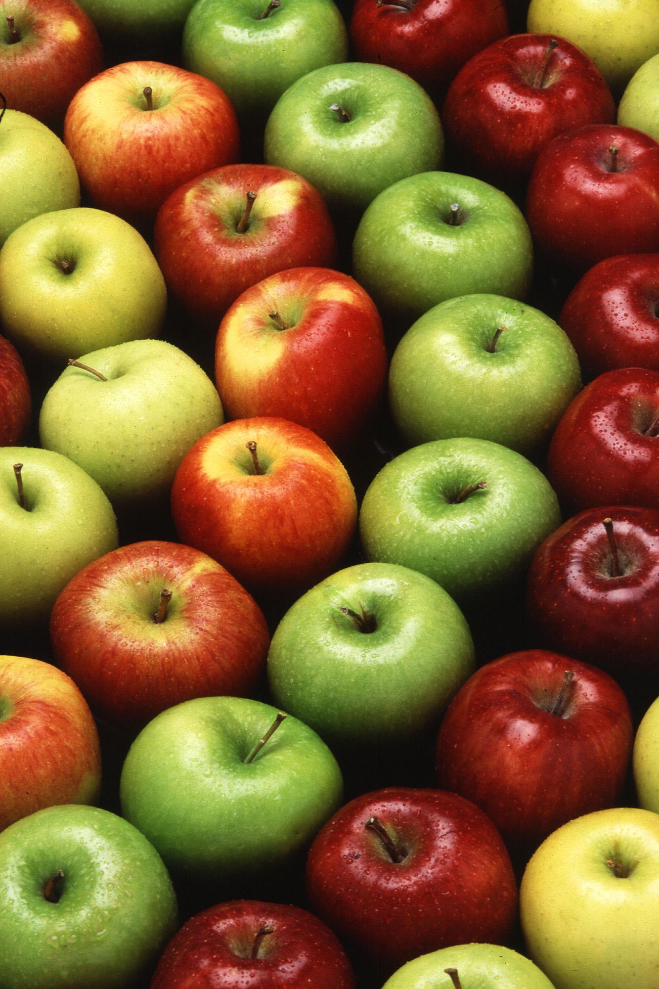 La mela propriet e benefici - Immagini stampabili di mele ...