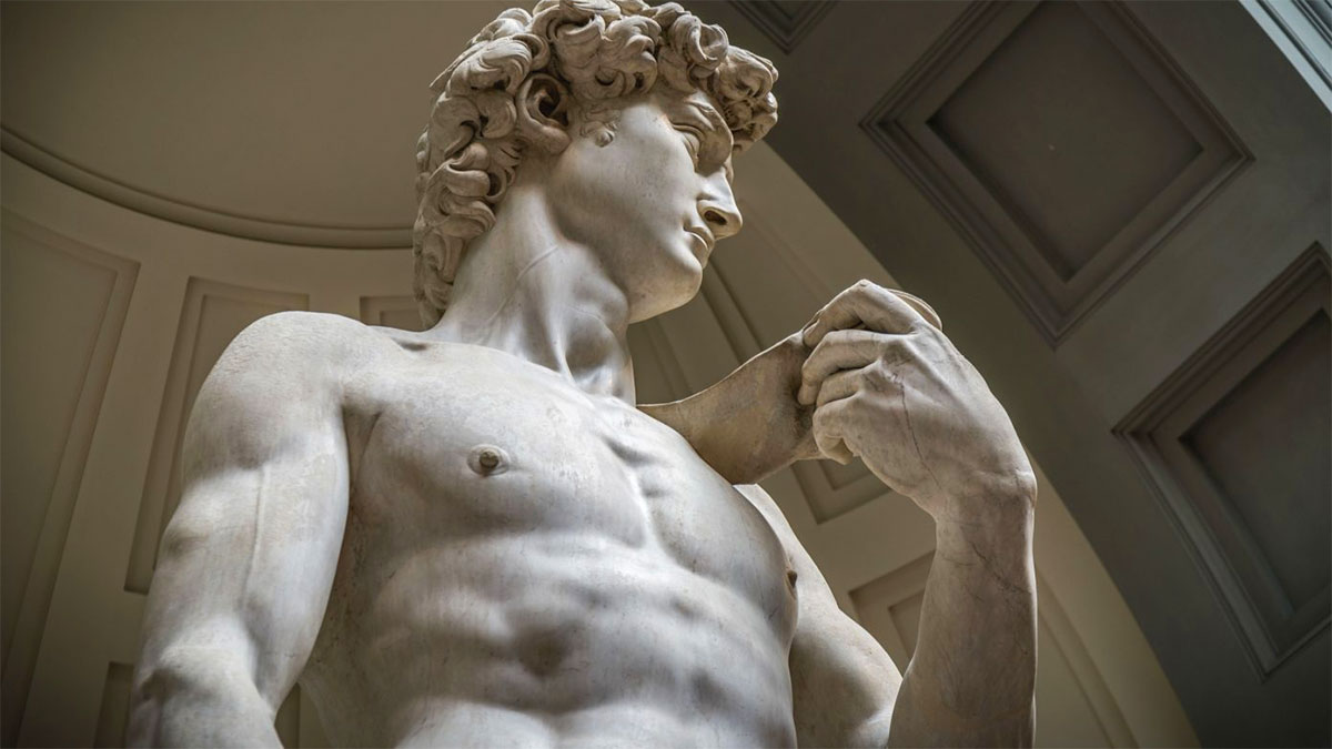 David Michelangelo petto addominali