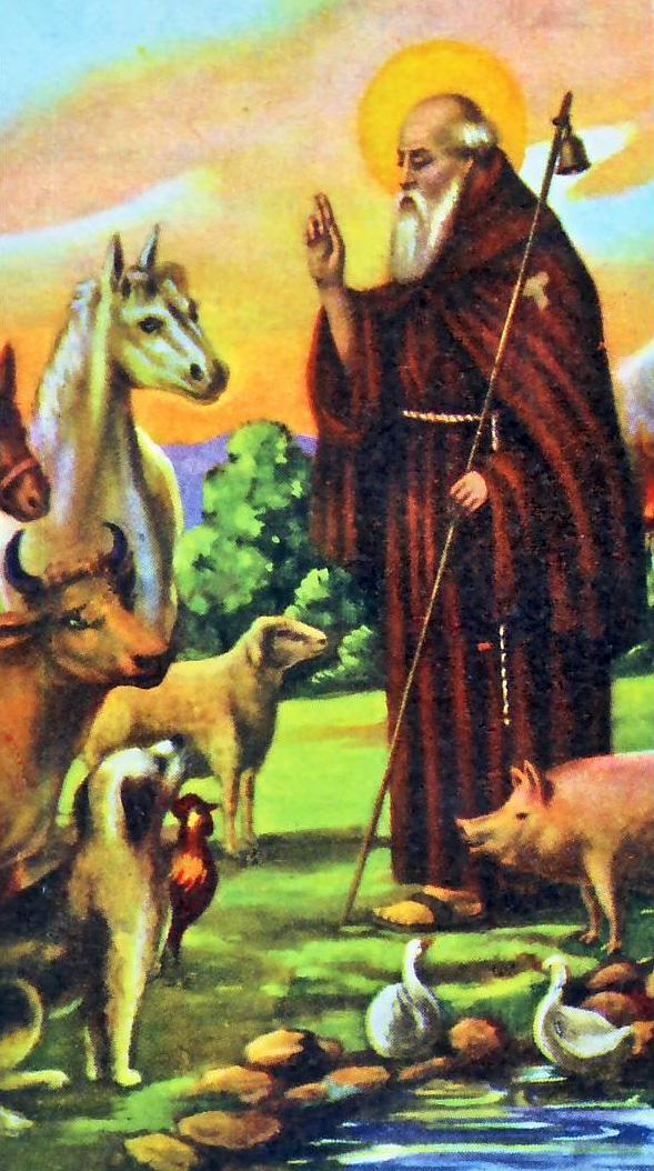 Sant antonio abate for Arredo bimbo sant antonio abate