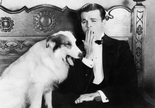 Un cane ed il suo padrone sbadigliano assieme per empatia