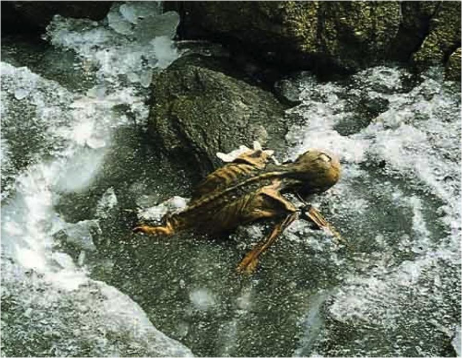 Ötzi che riemerge dai ghiacci