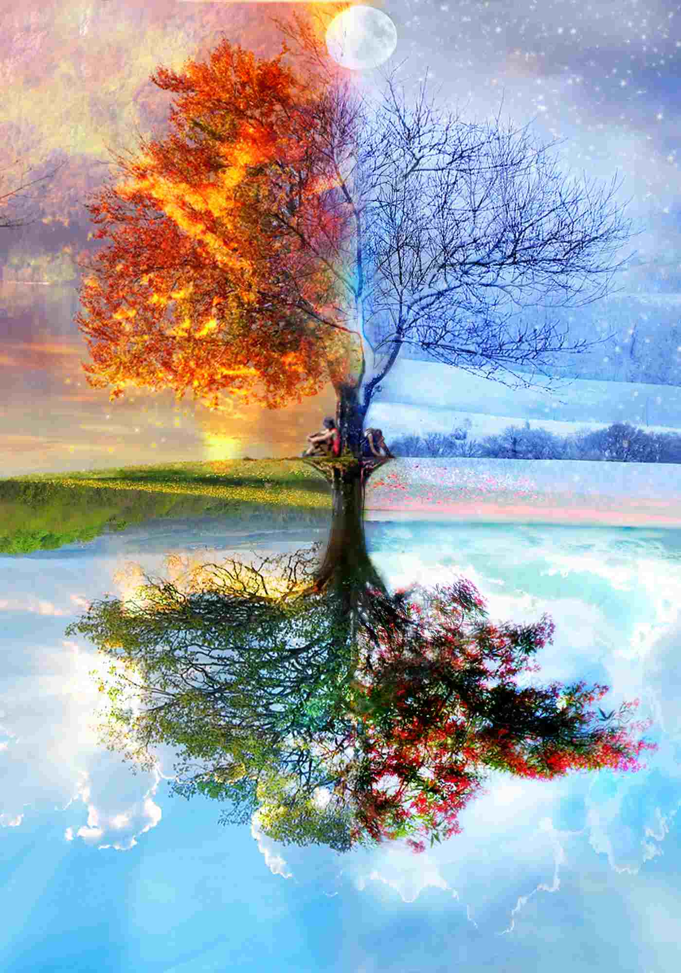 Immagine che simboleggia le stagioni (I nomi delle stagioni)
