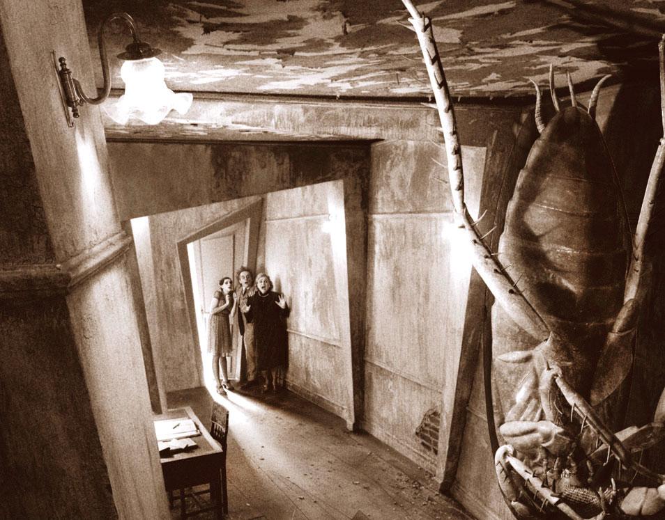 Risultati immagini per immagini dello scafaggio di kafka