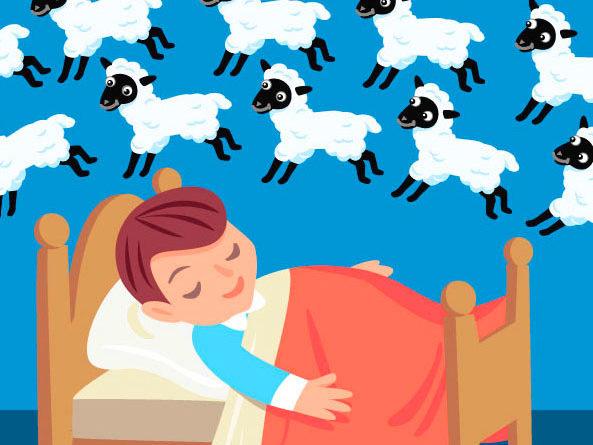 contare le pecore