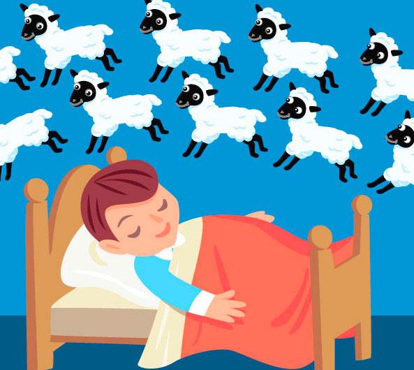 Pecorelle: si contano prima di addormentarsi