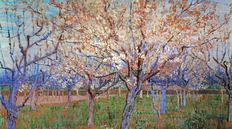 Albicocchi in fiore - Van Gogh