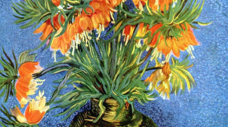 Fritillaria Van Gogh