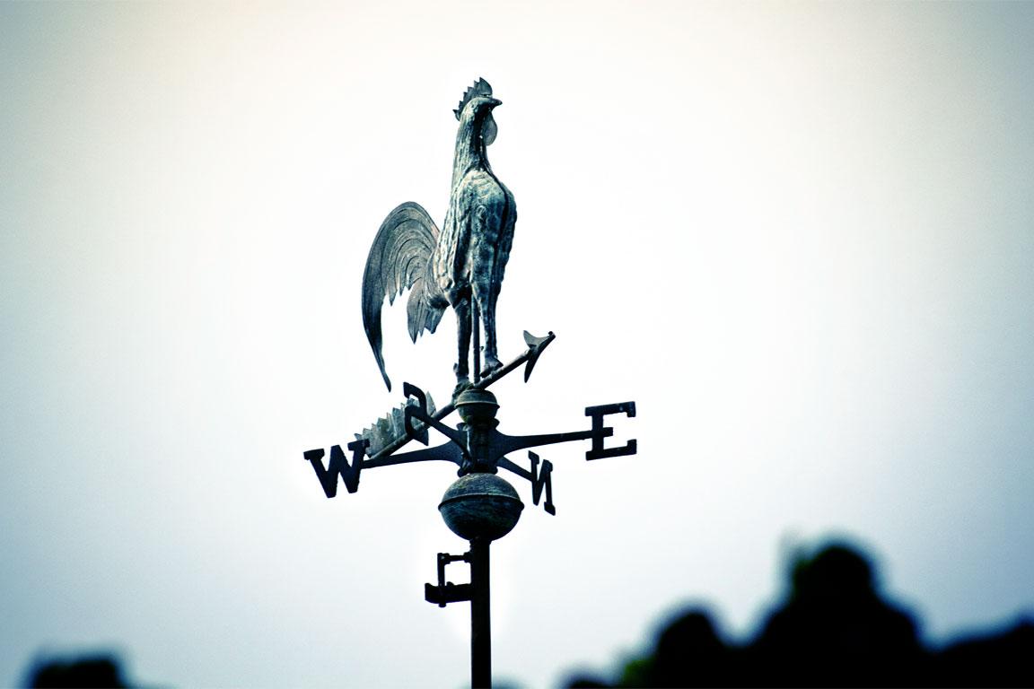 banderuola segnavento con un gallo