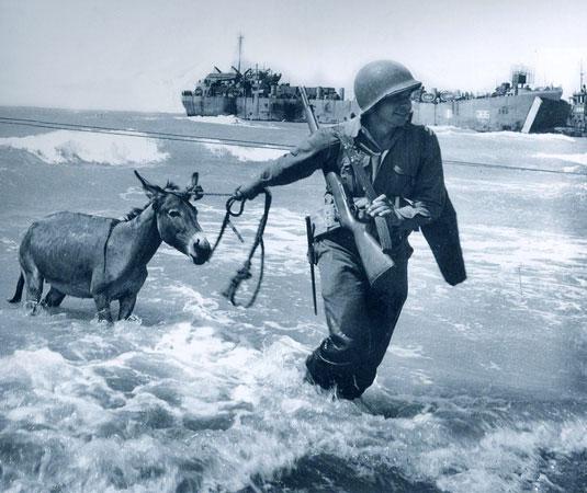 Lo sbarco in Sicilia - soldato con mulo