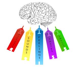 La PNL e le porte della percezione