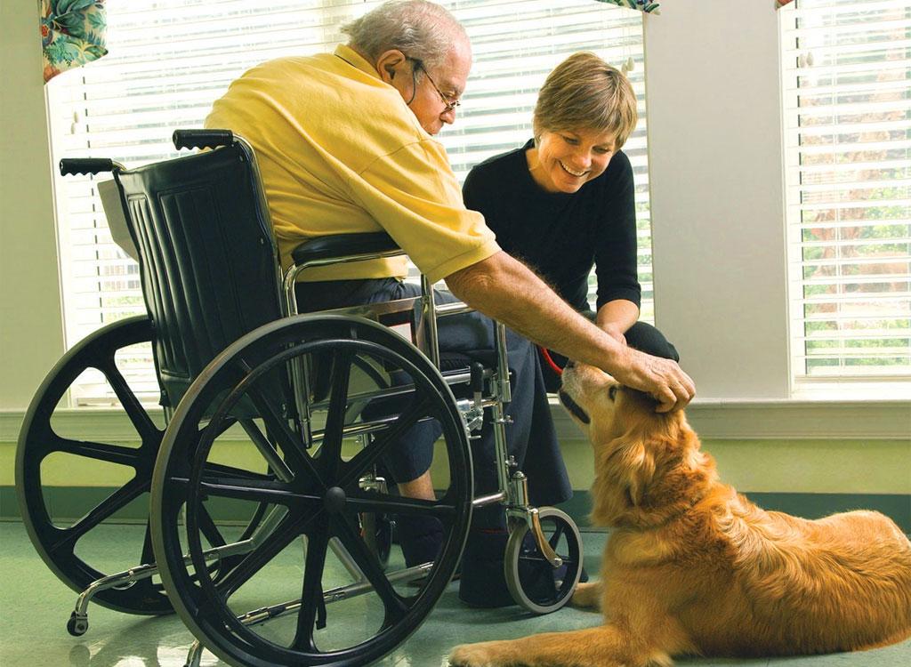 Pet-Therapy - con gli anziani