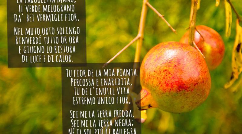 Pianto antico - poesia di Carducci - parafrasi commento