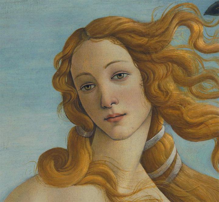 Il dettaglio del viso della Venere di Botticelli