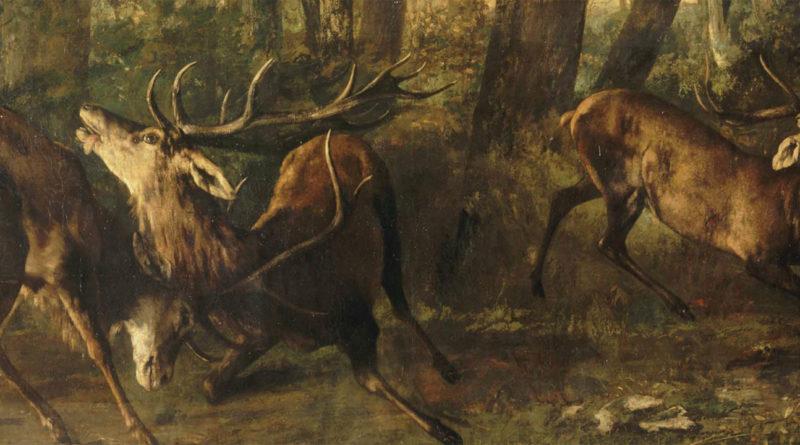 Fregola primaverile - Combattimento di cervi - quadro di Courbet
