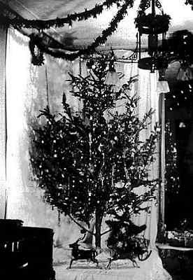 Le prime luci di Natale
