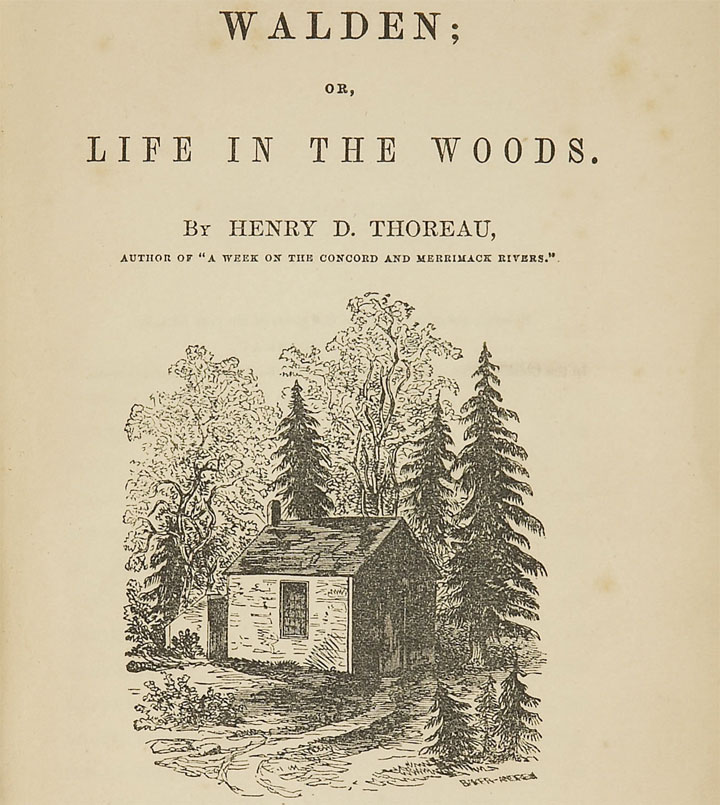 Walden life in the woods - book - summary