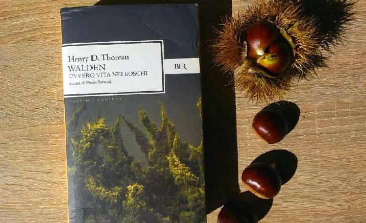 Walden ovvero la Vita nei boschi - libro - riassunto