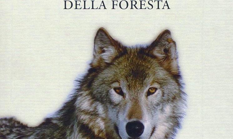 Il richiamo della foresta - Libro - Riassunto - Jack London - Buck