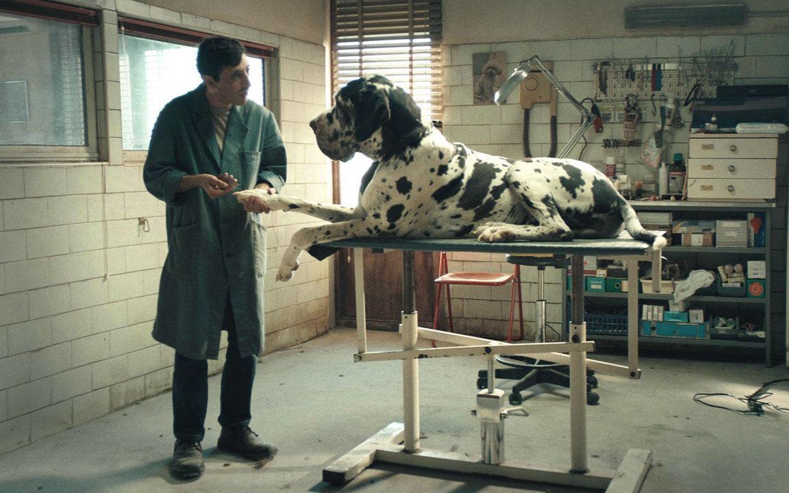 Dogman (una scena del film)
