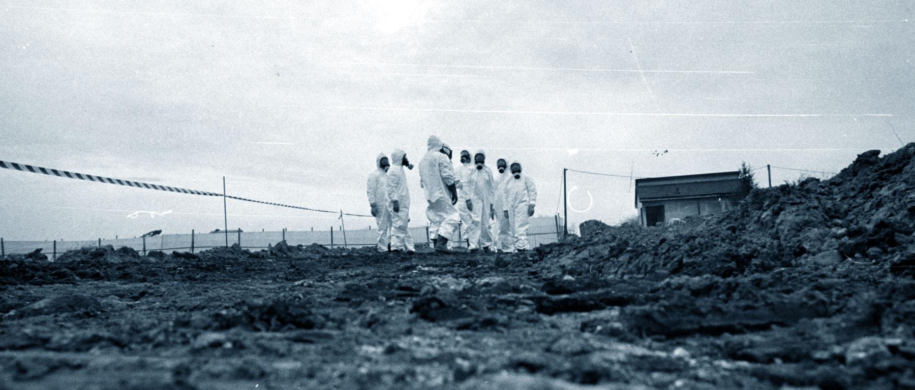Disastro di Seveso 10 luglio 1976 diossina