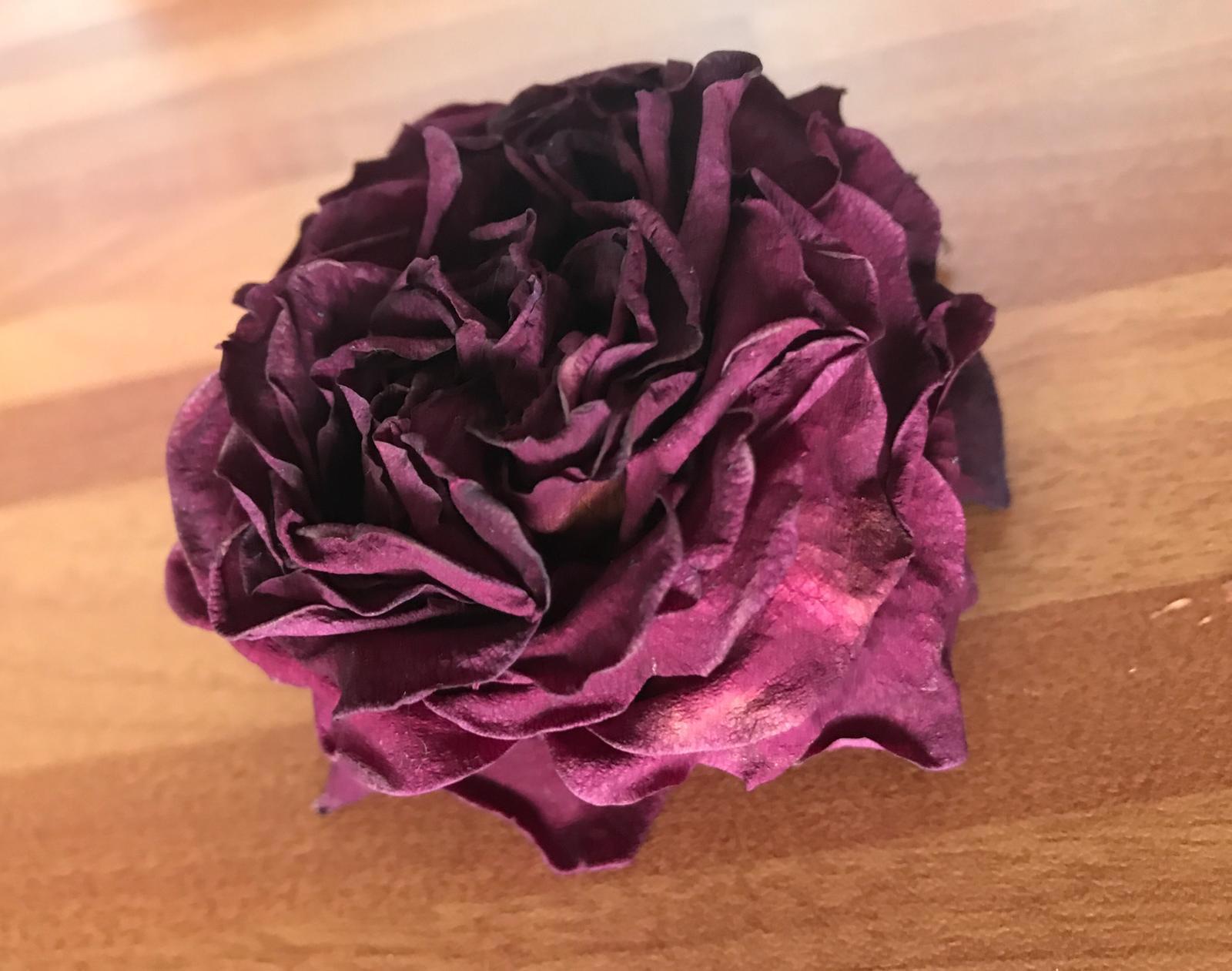 Rosa essiccata