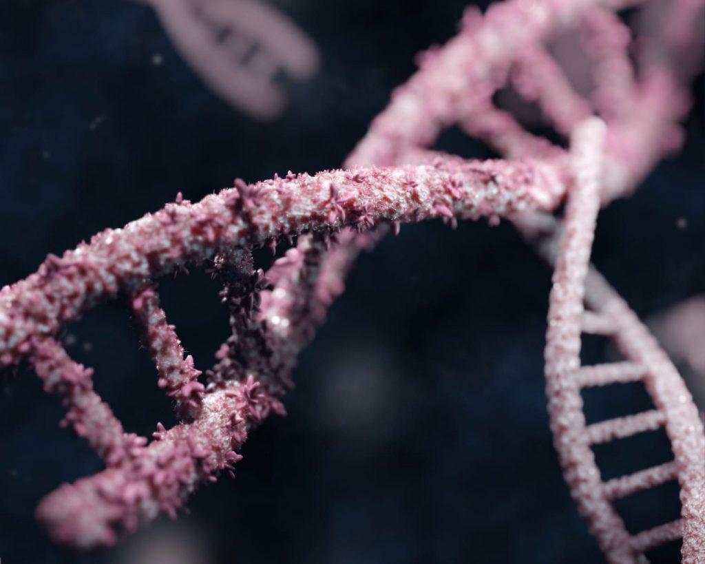 foto struttura DNA, modellazione 3D